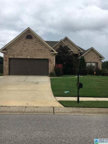 1041 Stonecreek Dr, Helena, AL 35080 (MLS #788444) :: The Mega Agent Real Estate Team at RE/MAX Advantage