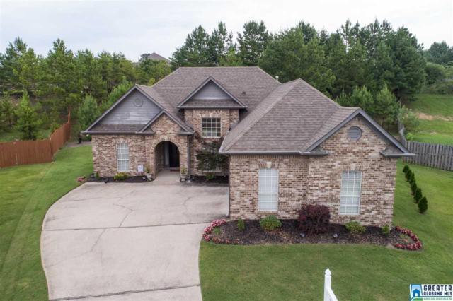 401 Summit Way, Fultondale, AL 35068 (MLS #791933) :: The Mega Agent Real Estate Team at RE/MAX Advantage