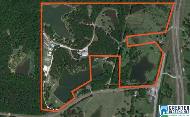 215 Brigadoon Way, RAMER, AL 36069 (MLS #792754) :: Bentley Drozdowicz Group