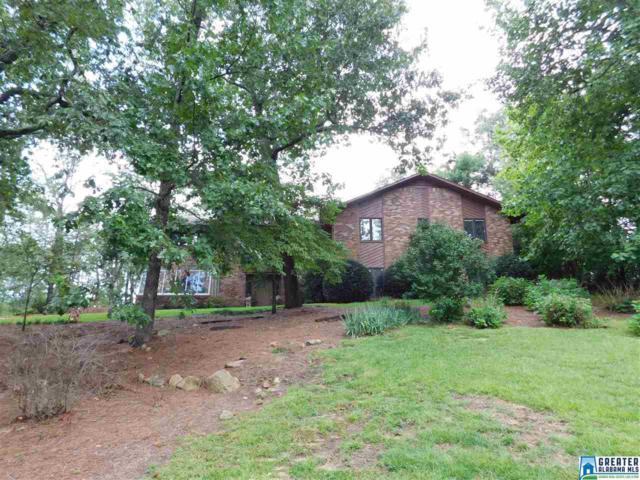 3546 Mill Springs Rd, Mountain Brook, AL 35223 (MLS #792772) :: Howard Whatley
