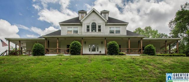 600 Honeysuckle Ln, Springville, AL 35146 (MLS #792902) :: Brik Realty