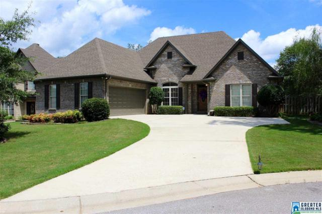 504 Park Lake Ln, Helena, AL 35080 (MLS #793117) :: RE/MAX Advantage