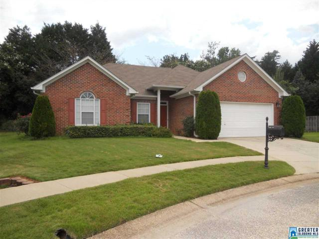 209 Old Brook Ct, Birmingham, AL 35242 (MLS #793691) :: Howard Whatley