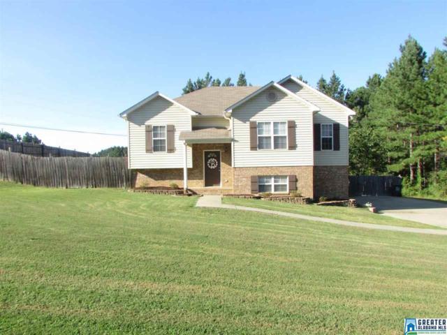 595 Magnolia Lake Ct, Odenville, AL 35120 (MLS #795591) :: Josh Vernon Group