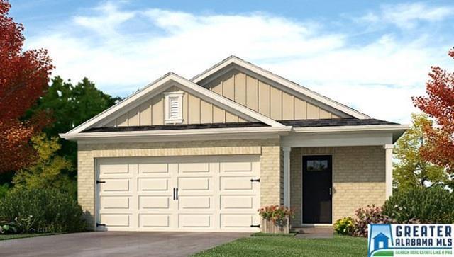 840 Hawthorn Ln, Odenville, AL 35120 (MLS #796094) :: Josh Vernon Group