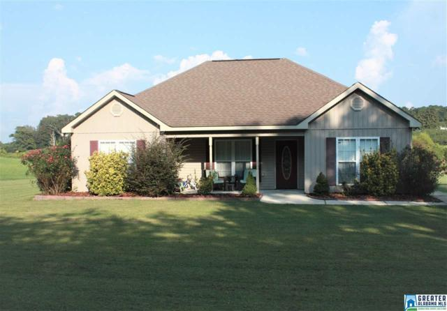 1728 Dakota Rd, Thorsby, AL 35171 (MLS #796506) :: The Mega Agent Real Estate Team at RE/MAX Advantage