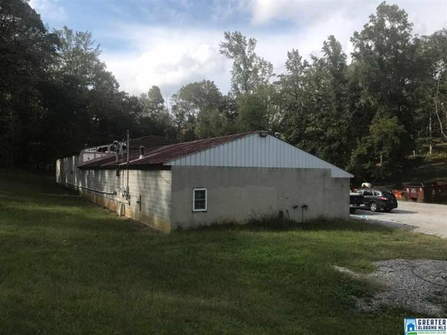 001 Hwy 411, Odenville, AL 35120 (MLS #798021) :: Josh Vernon Group