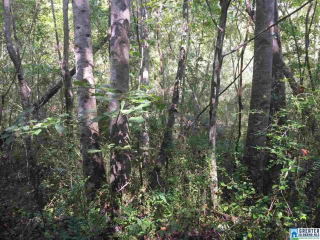 5735 Miles Spring Rd 94 Acres, Birmingham, AL 35126 (MLS #798447) :: Howard Whatley