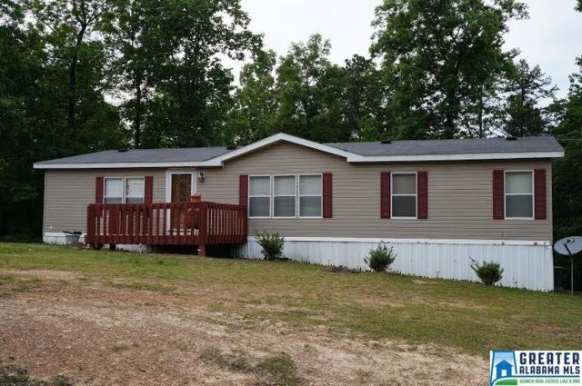 320 Mountain Springs Est, Odenville, AL 35120 (MLS #798474) :: Josh Vernon Group