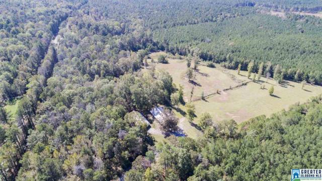 20505 Hwy 55 #0, Sterrett, AL 35147 (MLS #798750) :: RE/MAX Advantage