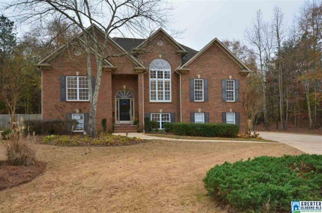 308 Branch Cir, Chelsea, AL 35043 (MLS #802128) :: A-List Real Estate Group