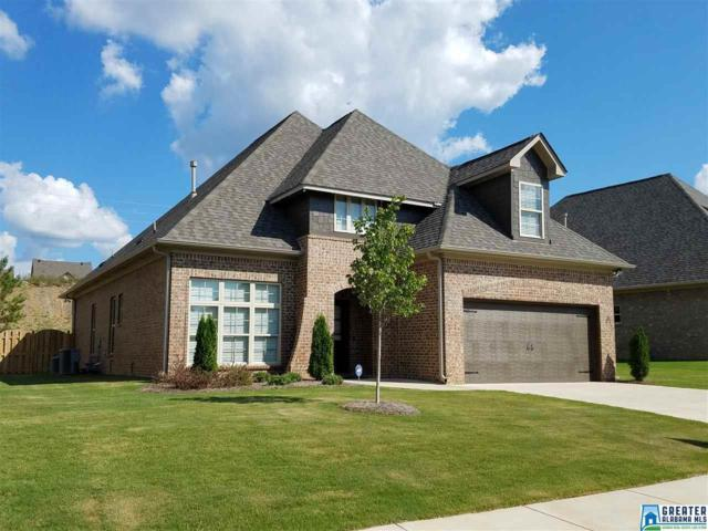 1029 Edgewater Ln, Chelsea, AL 35043 (MLS #802215) :: A-List Real Estate Group