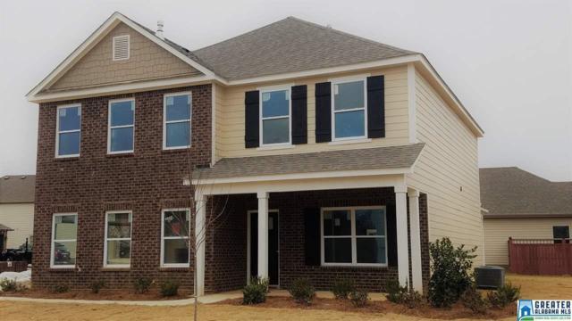 22920 Downing Park Cir, Mccalla, AL 35111 (MLS #802398) :: A-List Real Estate Group