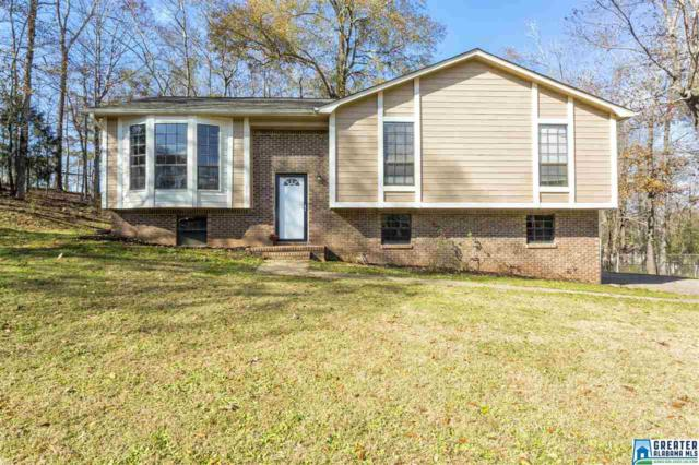 4217 Park Cir, Helena, AL 35080 (MLS #802438) :: Jason Secor Real Estate Advisors at Keller Williams