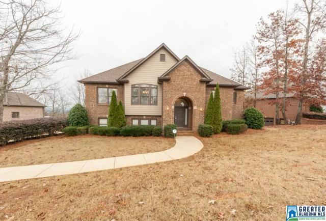 5875 Shades Run Ln, Hoover, AL 35244 (MLS #802629) :: Josh Vernon Group