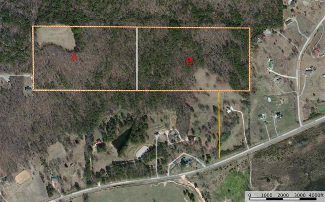 0 Co Rd 33 #22.5, Ashville, AL 35953 (MLS #802687) :: Jason Secor Real Estate Advisors at Keller Williams