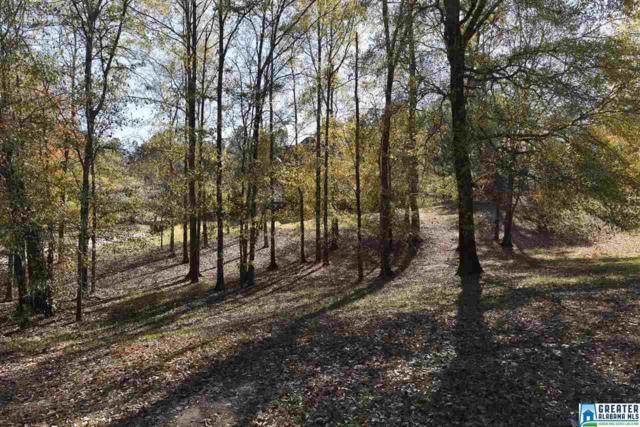 110 Carriage Creek Path, Chelsea, AL 35043 (MLS #802691) :: Jason Secor Real Estate Advisors at Keller Williams