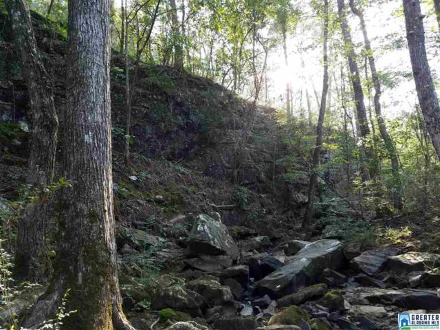 0 Orchard Mountain Cir 9 AC, Hayden, AL 35079 (MLS #804982) :: LIST Birmingham