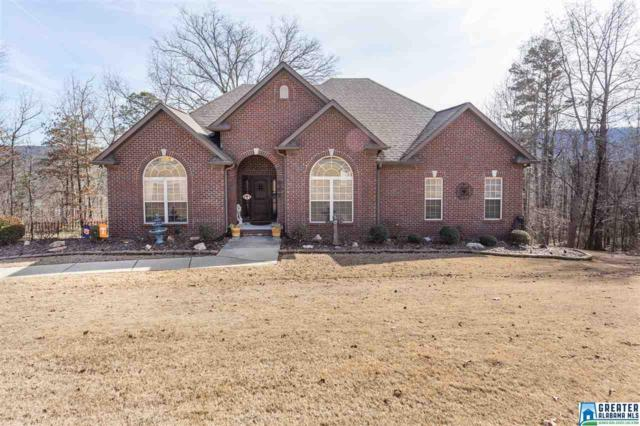 945 Mountain View Dr, Odenville, AL 35120 (MLS #806416) :: Josh Vernon Group