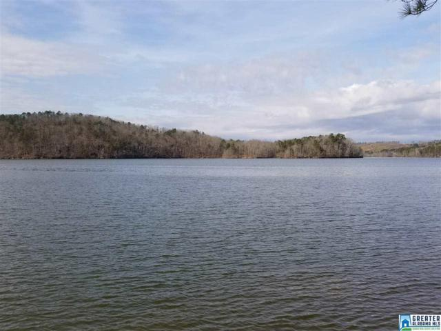 Mohawk Cliff Rd #0, Ohatchee, AL 36271 (MLS #806959) :: The Mega Agent Real Estate Team at RE/MAX Advantage