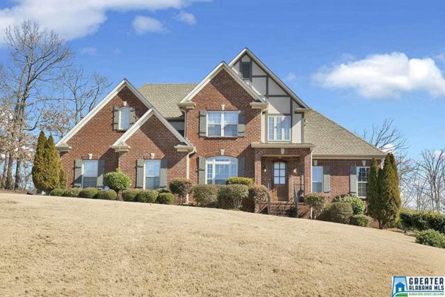 1724 Oak Park Ln, Helena, AL 35080 (MLS #807432) :: The Mega Agent Real Estate Team at RE/MAX Advantage