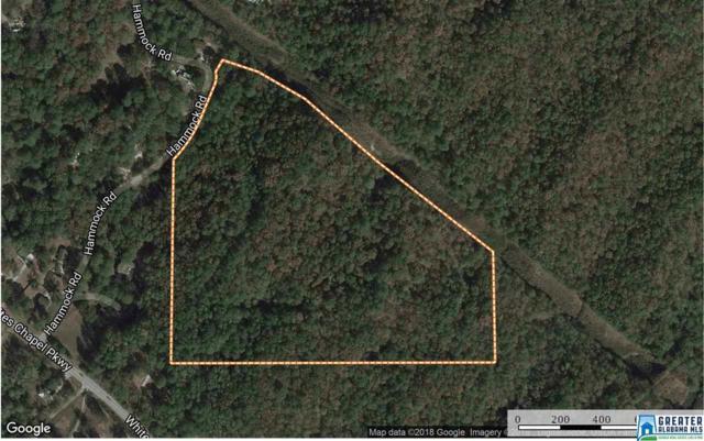 Hammock Rd 26 Acre, Trussville, AL 35004 (MLS #807721) :: Josh Vernon Group