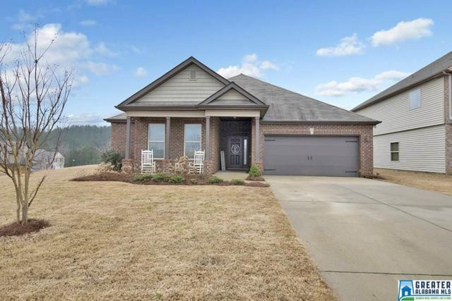 385 Blackberry Blvd, Springville, AL 35146 (MLS #807803) :: Josh Vernon Group