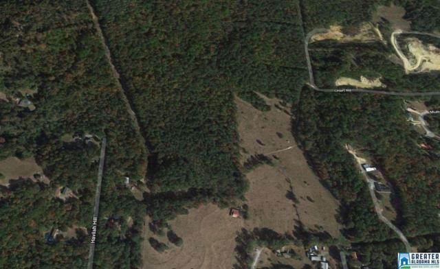 0 Havilah Hills St 40 Acres, Odenville, AL 35120 (MLS #810036) :: Josh Vernon Group