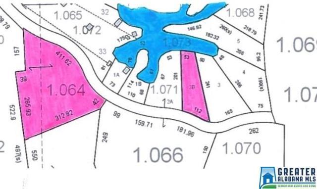 Crain Ln 2+Ac, Sylacauga, AL 35151 (MLS #810093) :: Josh Vernon Group