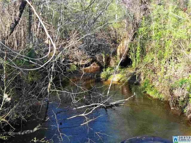 Big Springs Rd 28 Acres, Ashland, AL 36251 (MLS #810135) :: Brik Realty