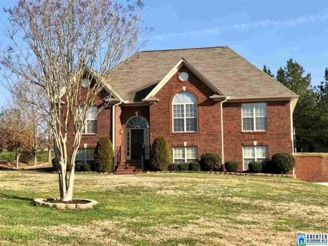 255 Ridgefield Dr, Odenville, AL 35120 (MLS #810155) :: Josh Vernon Group