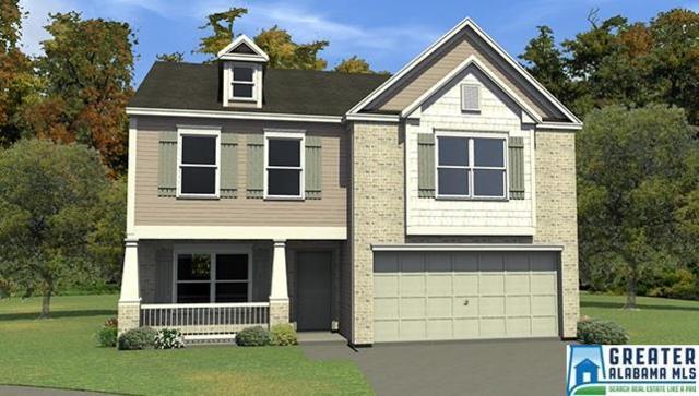248 Polo Field Way, Chelsea, AL 35043 (MLS #811878) :: The Mega Agent Real Estate Team at RE/MAX Advantage