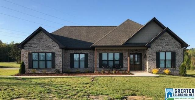 25 Shadow Bend Cove, Odenville, AL 35120 (MLS #813764) :: Josh Vernon Group