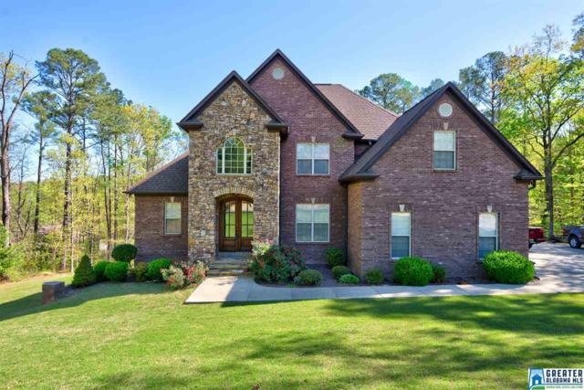 113 Azalea Trl, Oneonta, AL 35121 (MLS #814111) :: The Mega Agent Real Estate Team at RE/MAX Advantage