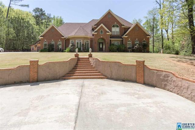 3045 Village Springs Rd, Springville, AL 35146 (MLS #814262) :: Josh Vernon Group