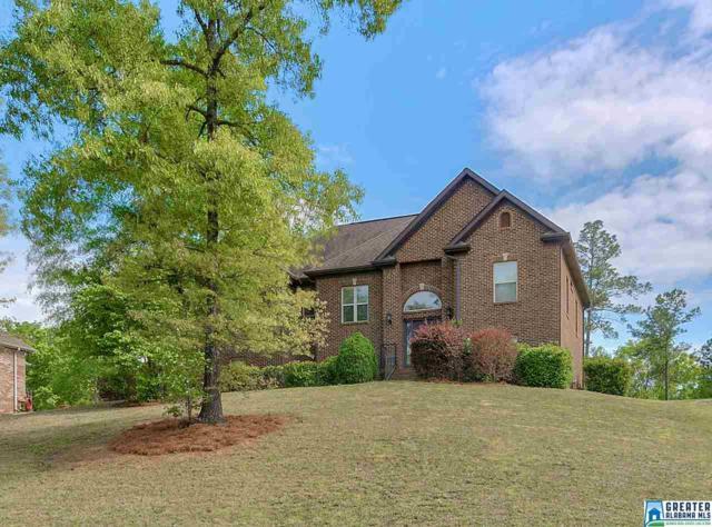 244 Lime Creek Ln, Chelsea, AL 35043 (MLS #814281) :: The Mega Agent Real Estate Team at RE/MAX Advantage