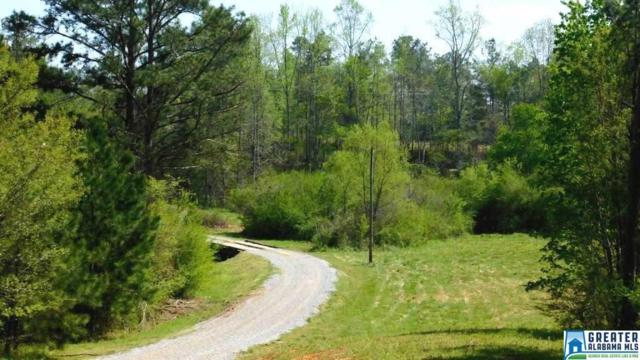 58 acres Hwy 65 58 Acres, Fruithurst, AL 36262 (MLS #814417) :: The Mega Agent Real Estate Team at RE/MAX Advantage