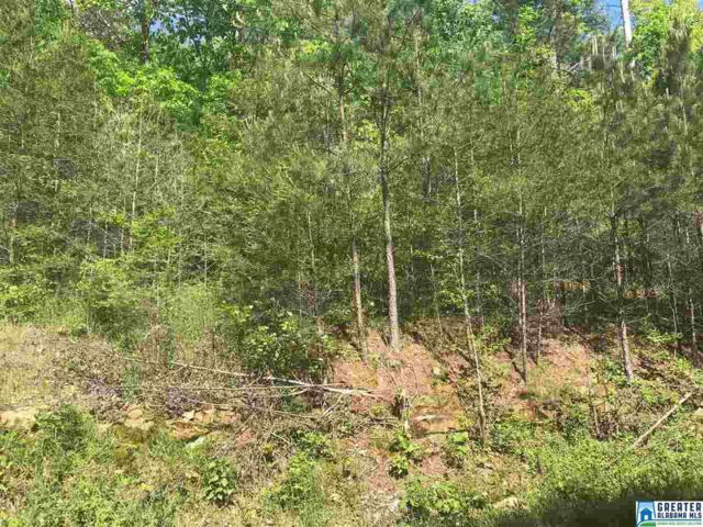 8526 Emerald Lake Dr W Lot 142B Lot 14, Pinson, AL 35126 (MLS #814764) :: LIST Birmingham