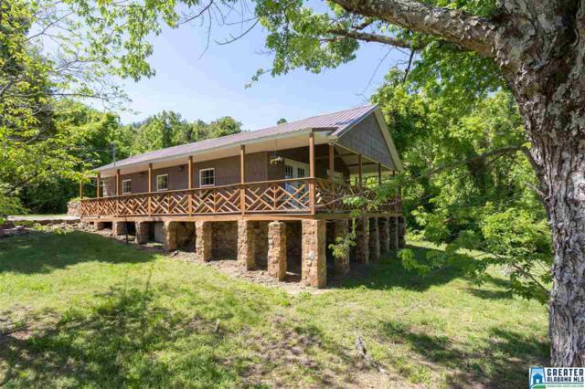 989 Sawyer Mountain Rd, Oneonta, AL 35121 (MLS #815162) :: LIST Birmingham