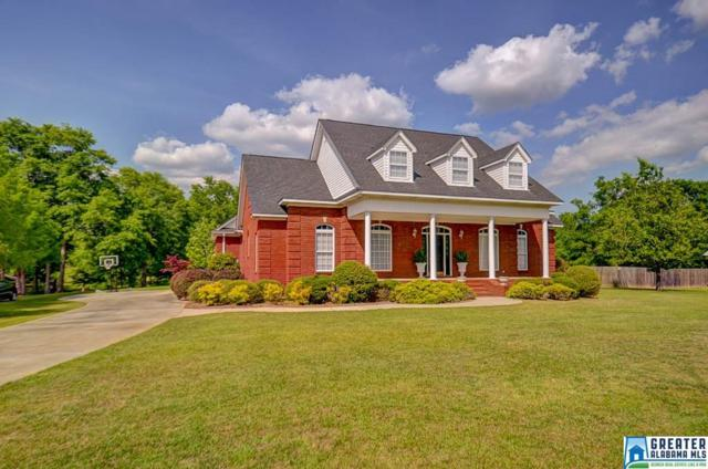 209 Buck Cir, Clanton, AL 35045 (MLS #815370) :: The Mega Agent Real Estate Team at RE/MAX Advantage