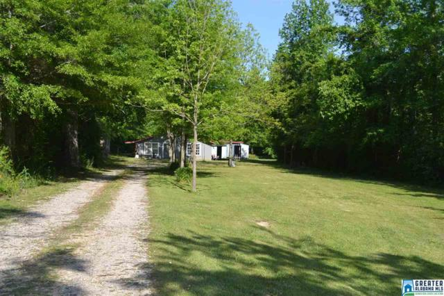 486 Old Springville Rd, Odenville, AL 35120 (MLS #815479) :: Williamson Realty Group