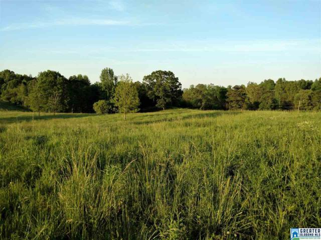 23+/- acres Hwy 9 Hwy 9 & Ingram , Lineville, AL 36266 (MLS #815530) :: LIST Birmingham