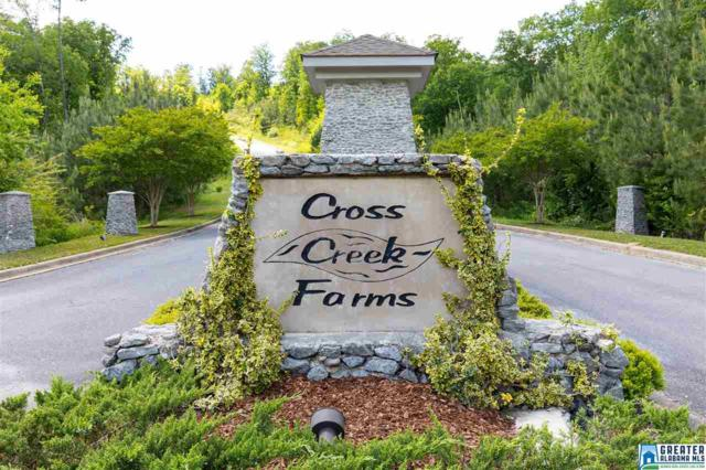 0 Cross Creek 1-50, Odenville, AL 35120 (MLS #816276) :: LIST Birmingham
