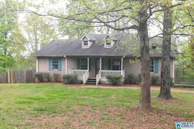 2160 Levine Rd, Odenville, AL 35120 (MLS #816739) :: Williamson Realty Group
