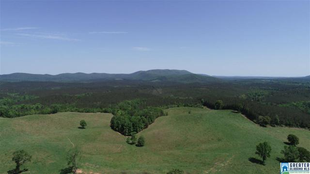 Co Rd 31 #0, Ashland, AL 36251 (MLS #816968) :: LIST Birmingham