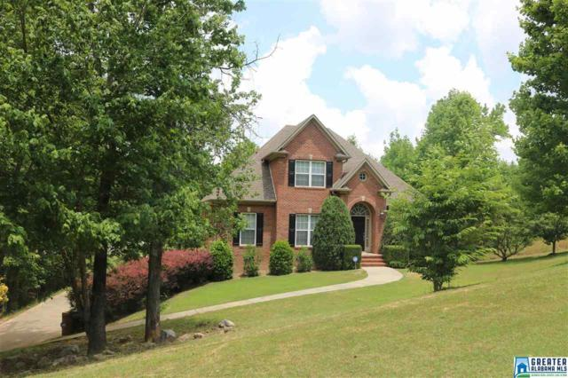332 Deer Ridge Ln, Chelsea, AL 35043 (MLS #816984) :: Josh Vernon Group