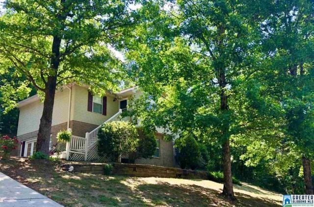 195 Mountain Oaks Valley Rd, Warrior, AL 35180 (MLS #816991) :: Howard Whatley