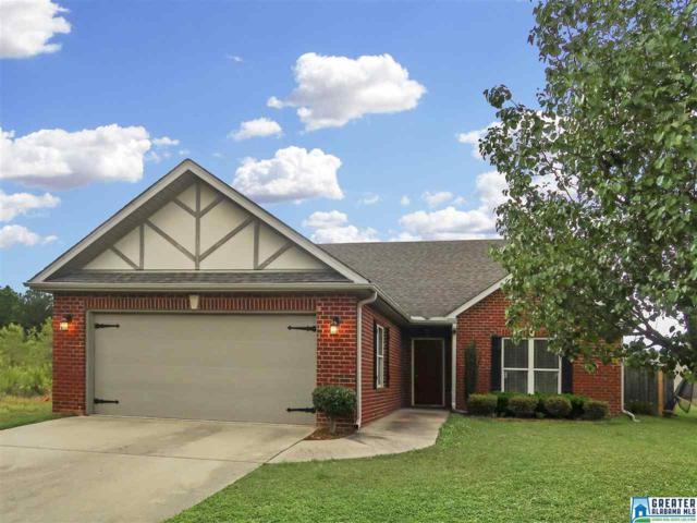 3598 Wind Ridge Ln, Bessemer, AL 35022 (MLS #817431) :: Josh Vernon Group