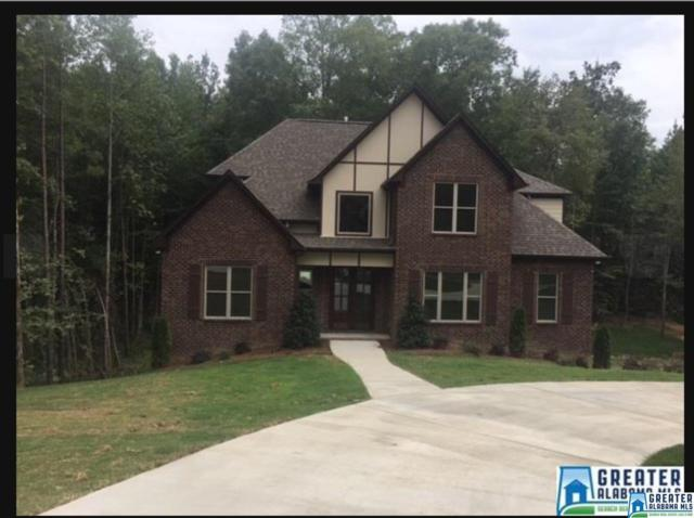 480 Bent Creek Trc, Chelsea, AL 35043 (MLS #817448) :: The Mega Agent Real Estate Team at RE/MAX Advantage