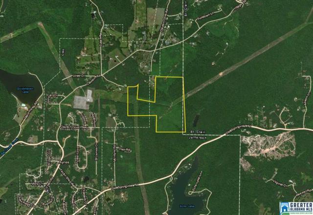 8435 Clayton Rd None, Springville, AL 35146 (MLS #817488) :: Brik Realty